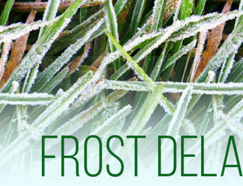 Frost Delaying Time of Play